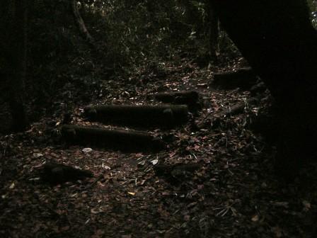 S翠が丘公園DSCN5172