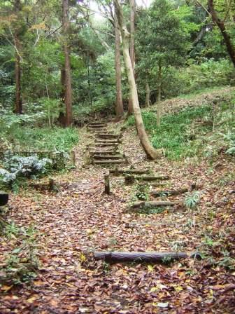 S翠が丘公園DSCN5201