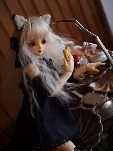 P1011425.jpg