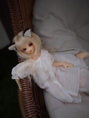 P1011539.jpg