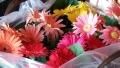 1021花