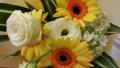 1109花