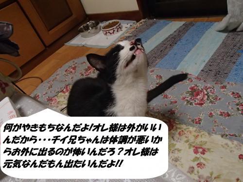 PA130256_convert_20151016144812.jpg