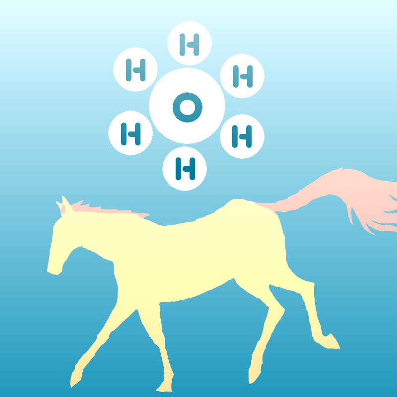 H6ORSE.png
