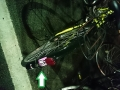 DSC_0232自転車シール