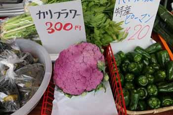 20151024_軽トラ市4
