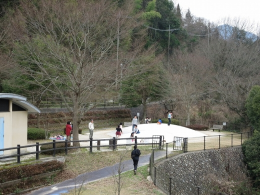 2016.03.13 いちご狩り 043