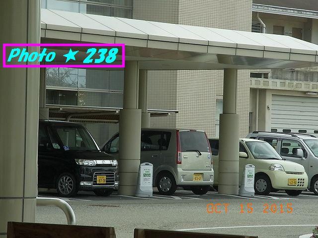ゆずりあい駐車の弊害②