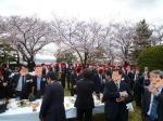 観桜会1-1