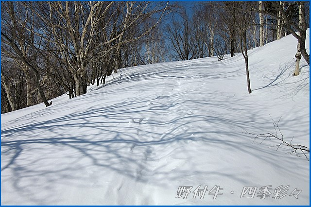 s-C102913-0.jpg