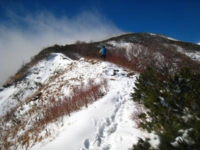 新雪を踏み踏み