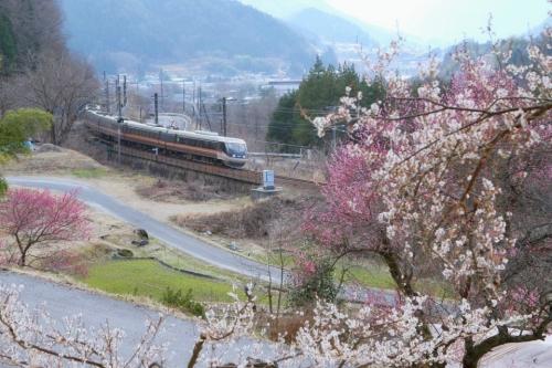 IMG_4852 西線 しなの 春