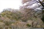 s2rakuraku_201603272033285ec.jpg
