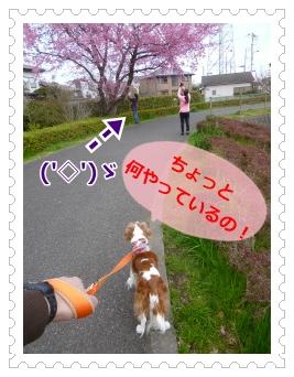 2016032601.jpg