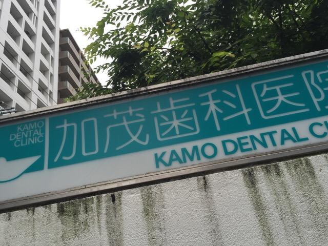 kamoG_2624.jpg