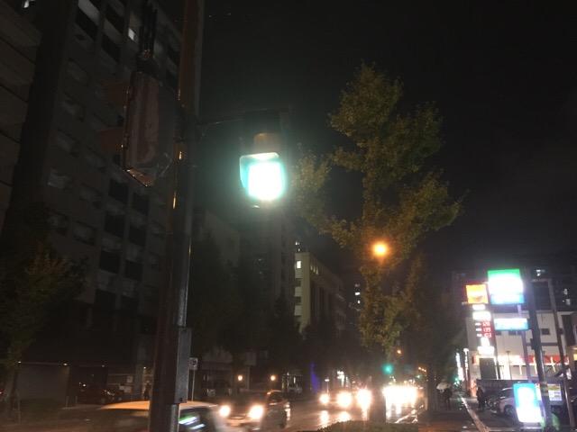 rin11_3008.jpg