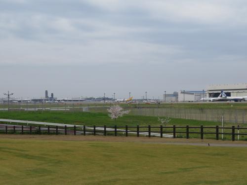 展望台ー66
