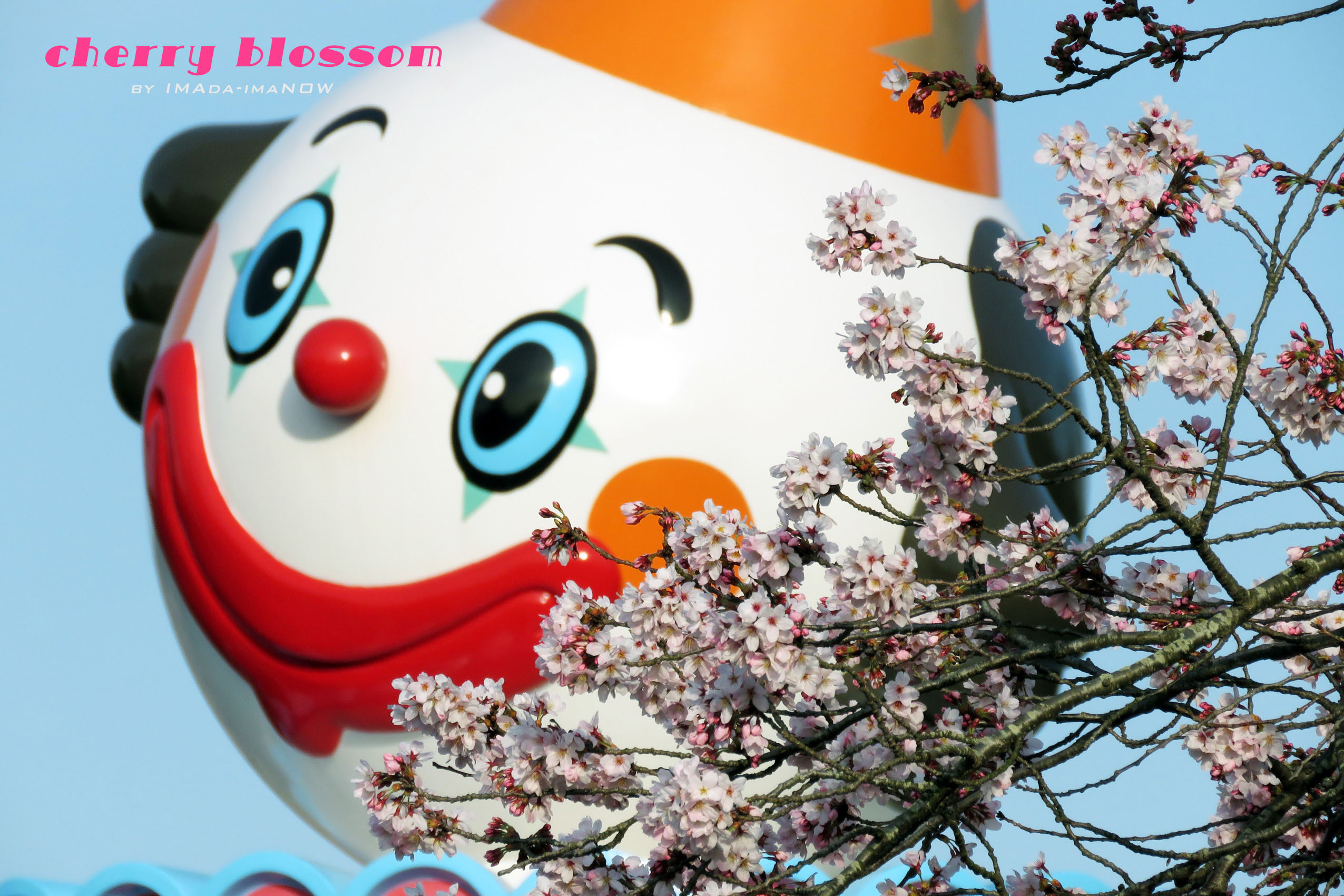 IMG_6783g.jpg