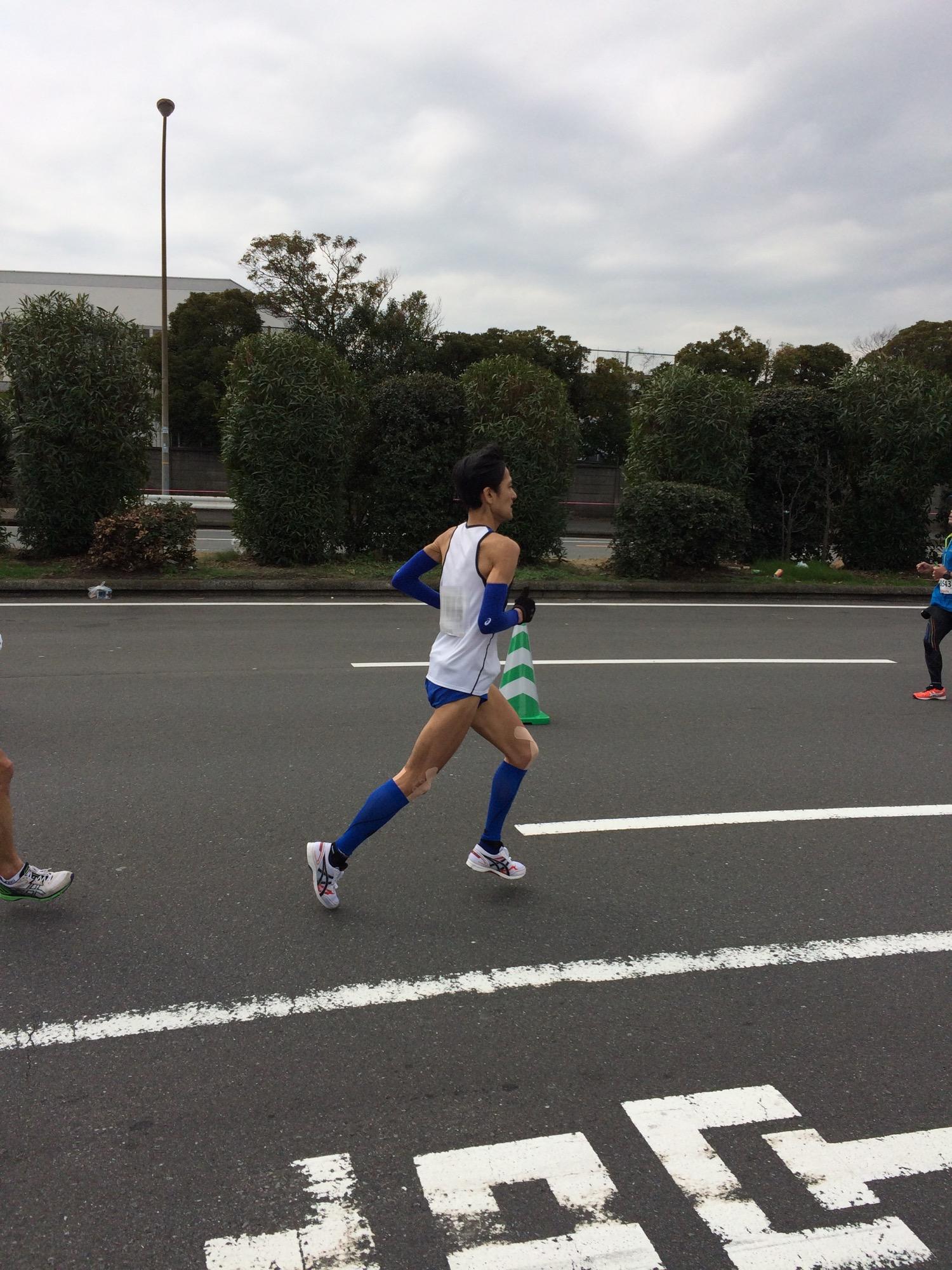 横浜36kmハロさん