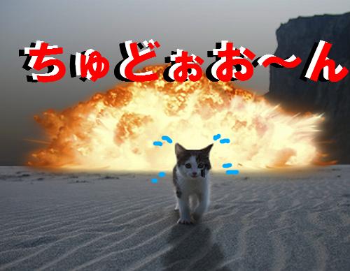 爆発の画像