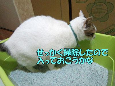 160327-01.jpg