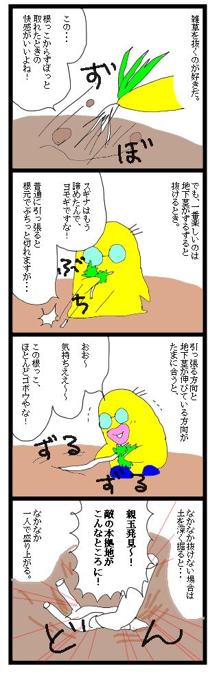 0330雑草1