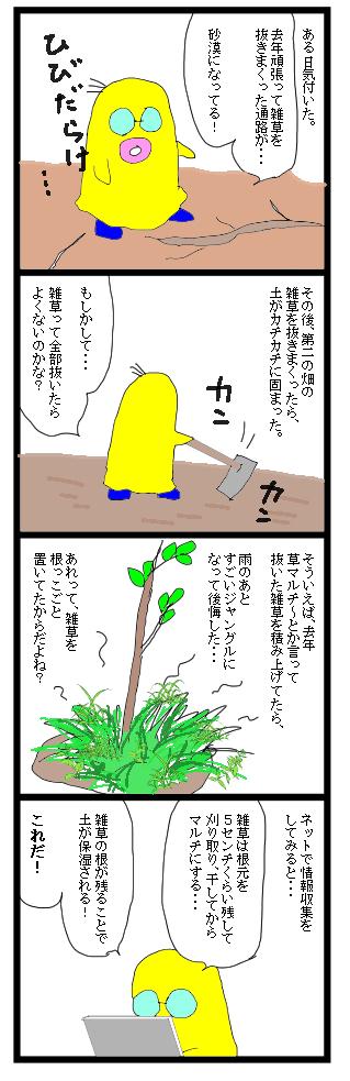 0330雑草2
