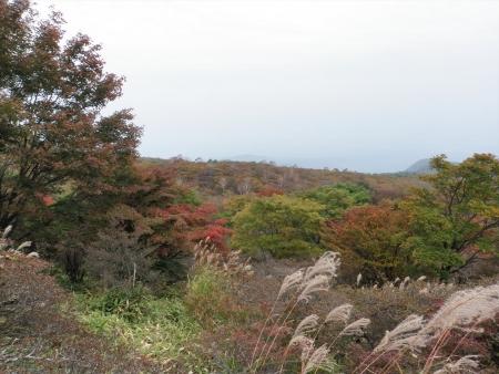 151010荒山 (6)s