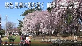 桜色 見事に弧を描く 前橋・敷島公園