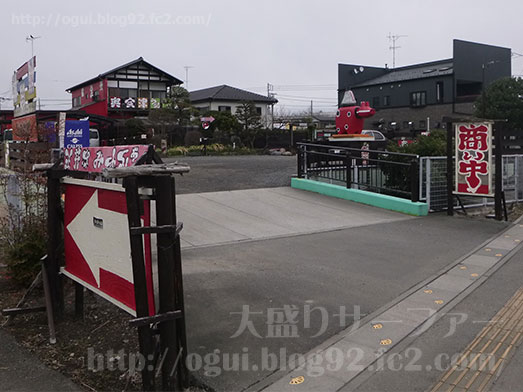 奥会津のチョモランマかき揚げセット002
