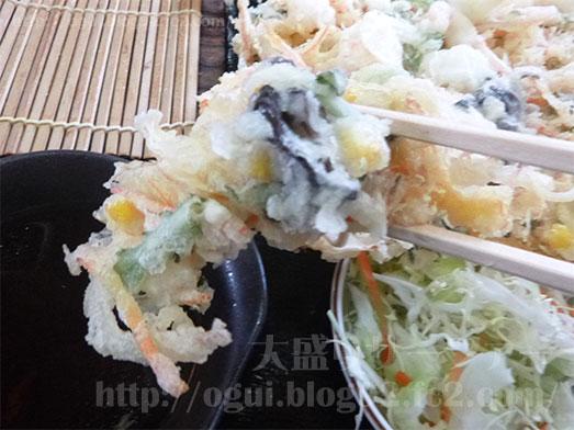 奥会津のチョモランマかき揚げセット027