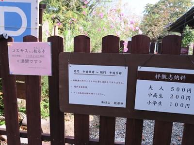 般若寺(コスモス寺) (4)
