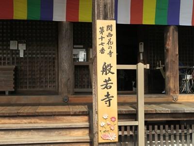 般若寺(コスモス寺) (14)