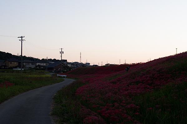 矢勝川3-9