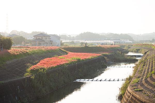 矢勝川2-1