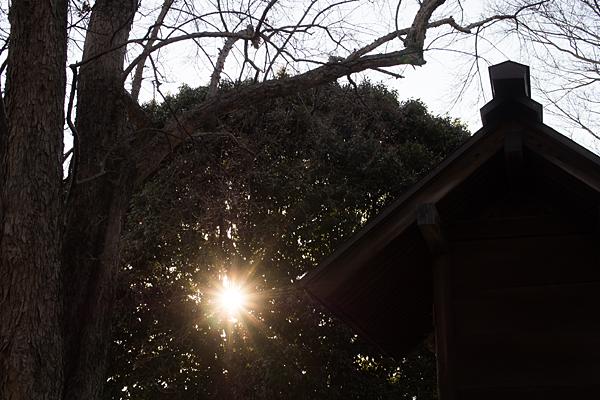 社殿と太陽