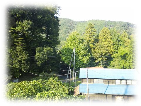 151031kiyokawa4.png