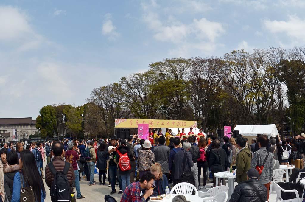 D70_8436上野の桜
