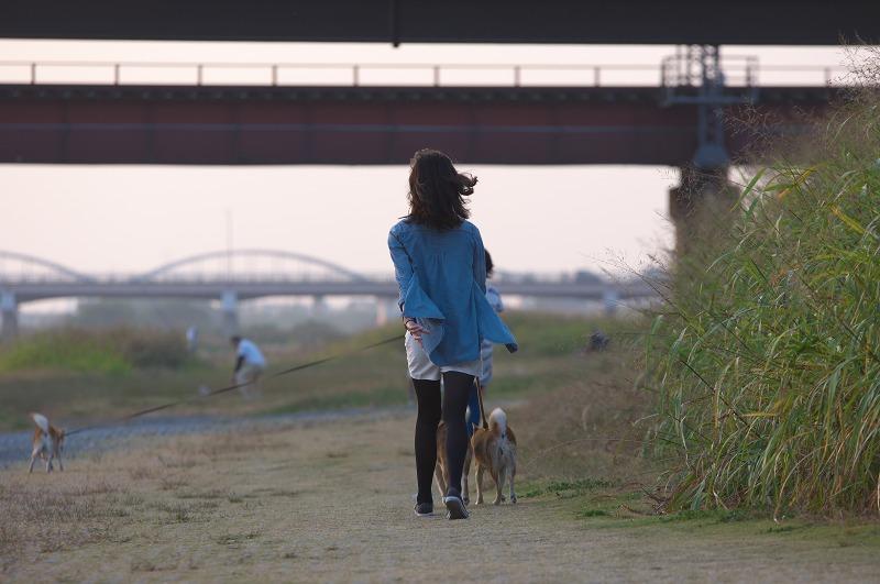 大和川・柏原市役所前 夕焼け 犬の散歩