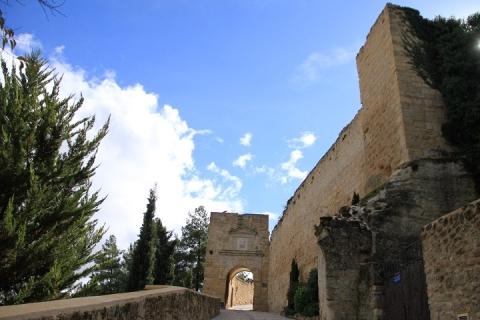 1508 Castillo en Alcala