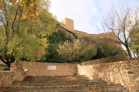 1505 Castillo en Alcala
