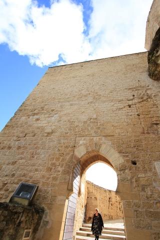 1538 Castillo en Alcala