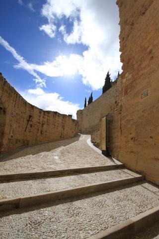 1545 Castillo en Alcala