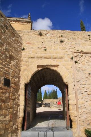 1576 Castillo en Alcala