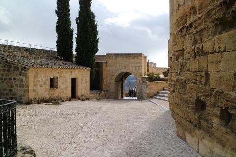 1577 Castillo en Alcala-M