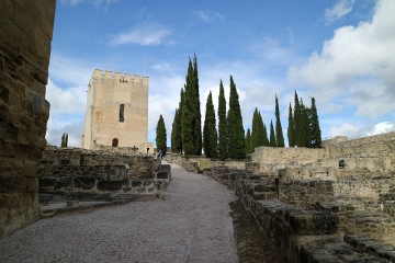 1589 Castillo en Alcala-M