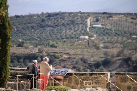 1645 Castillo en Alcala