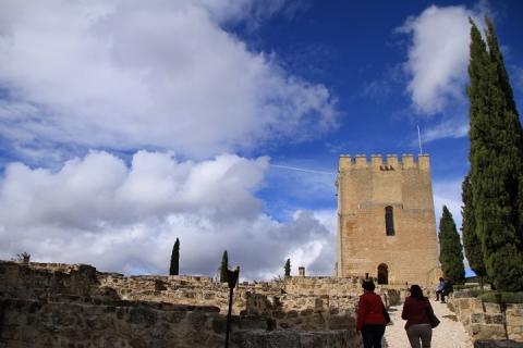 1641 Castillo en Alcala