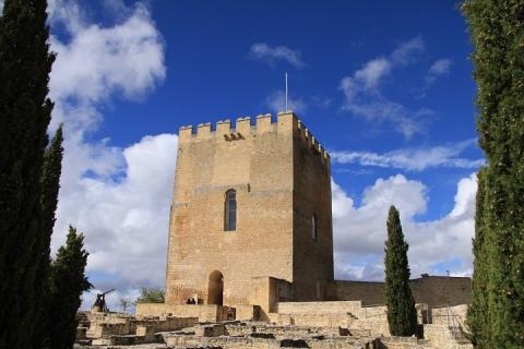 1640 Castillo en Alcala
