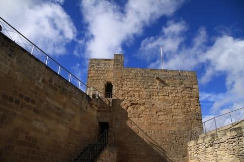 1650 Castillo en Alcala
